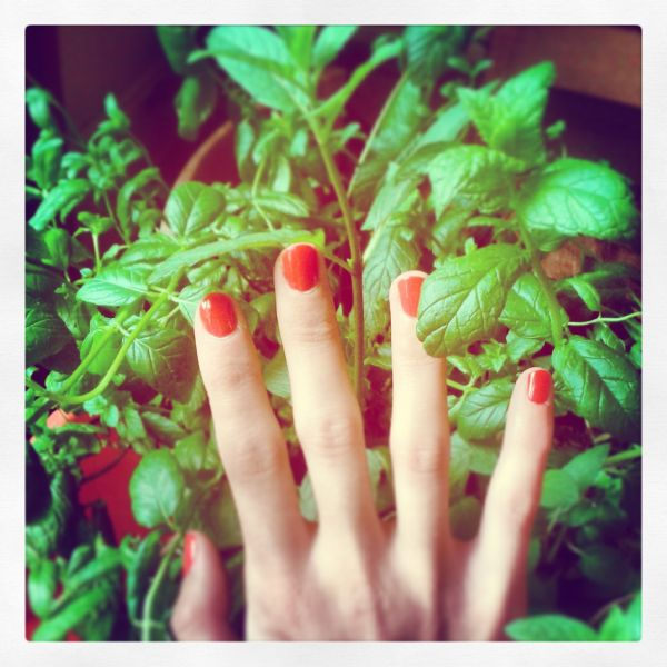 Helena-Maratheftis-Instagrams-Aug2013--01