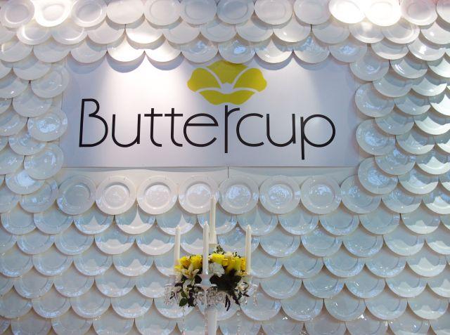 2015_02_06-THEFTY-Buttercup-springfair-01